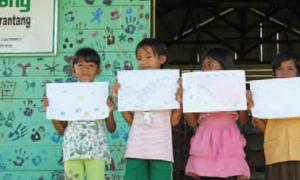 Der Orang-Utans in Not e.V. stellt sich vor